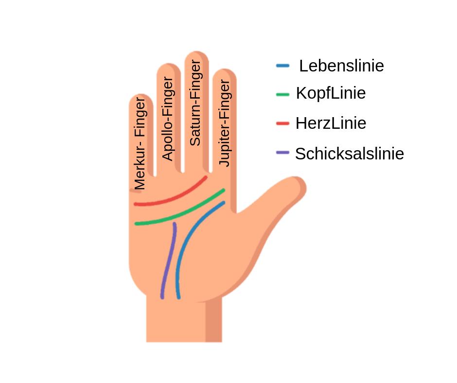 Bedeutung handlesen ehelinie Linien